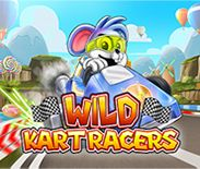 Wild Kart Racers